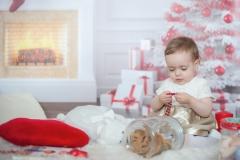 Mini-séance de Noël-6